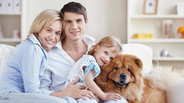 Wills & Trusts dog-young-family Direct Wills Newport